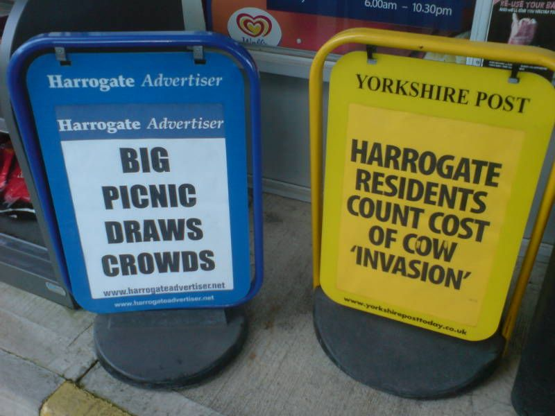 It's all on in Harrogate!